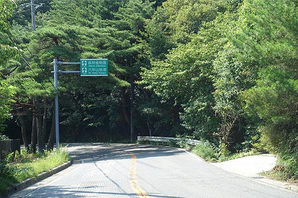 道路上部に緑の「道路標識」